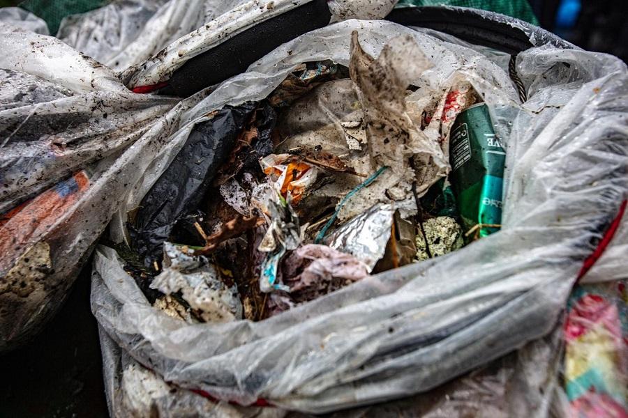 Sin diferencias en la presencia de basuras en zonas protegidas y no protegidas