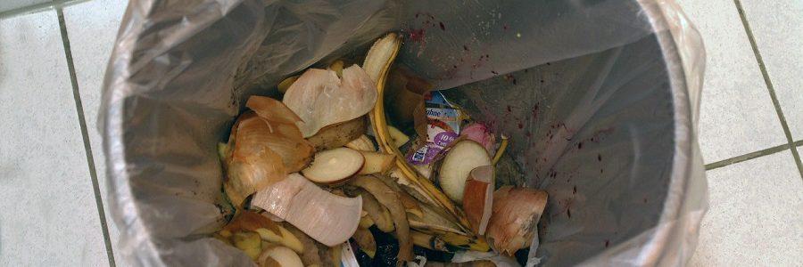 Consejos prácticos para la gestión de residuos domésticos durante el confinamiento