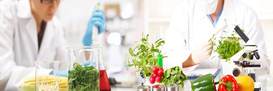 Tecnología innovadora y nuevos modelos de negocio para fomentar la economía circular en el sector agroalimentario