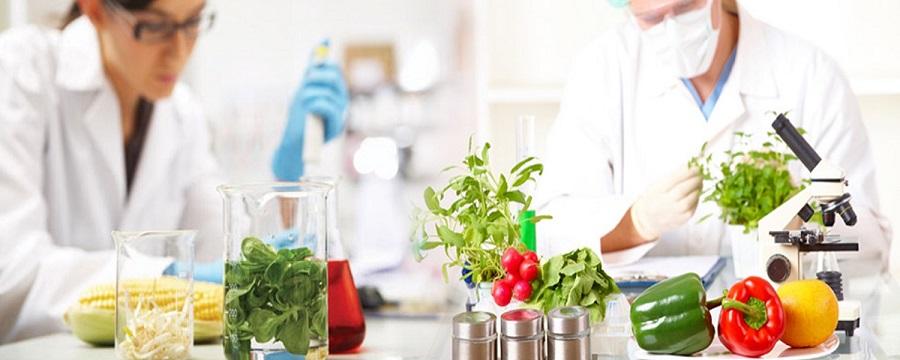 El proyecto ORHI promueve la economía circular en el sector agroalimentario