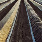 La futura ley de residuos permitirá crear sistemas voluntarios para la gestión de plásticos agrícolas