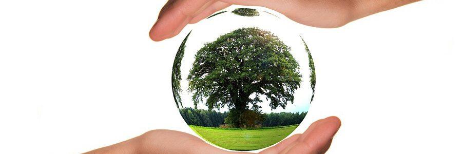 El Gobierno Vasco convoca ayudas por dos millones para inversiones destinadas a proteger el medio ambiente