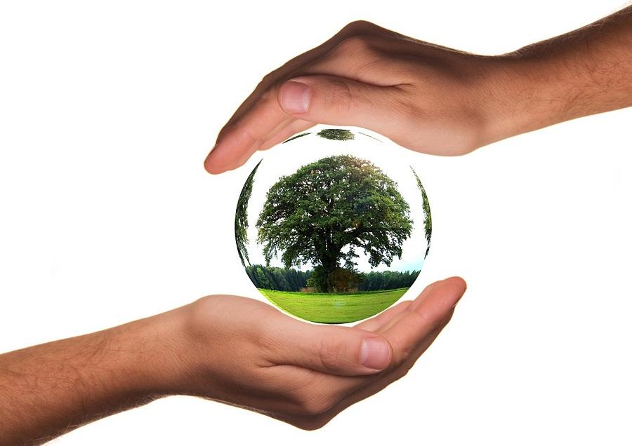 Nuevas ayudas del Gobierno Vasco a la protección del medio ambiente