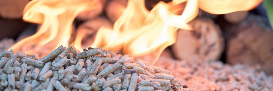 Baleares convoca ayudas por 300.000 euros para el fomento de la biomasa