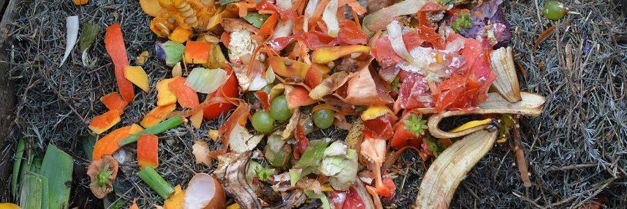 Nace la red de municipios de Burgos para promover el compostaje doméstico