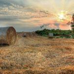 Asturias pone en marcha un proyecto de valorización de residuos agrarios