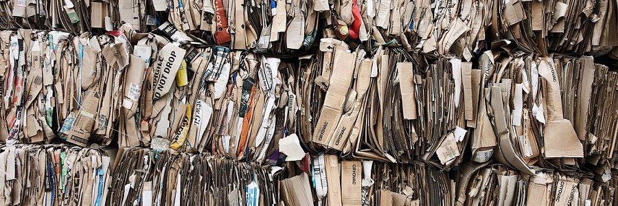La mitad de la producción mundial de papel y cartón se fabrica con fibra recuperada