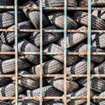 El proyecto BlackCycle desarrollará nuevas vías para el reciclaje de neumáticos