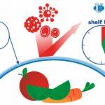 Investigadores rusos crean un recubrimiento para alimentos antibacteriano y biodegradable