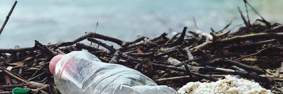 Cinco mitos erróneos sobre los impactos ambientales de los plásticos de un solo uso