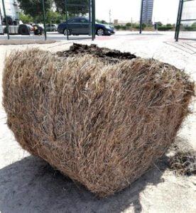 Paja del arroz preparada para los talleres de compostaje en Valencia