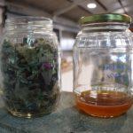 La empresa alicantina Greene producirá combustible para barcos a partir de residuos