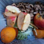 ¿Quiénes son los responsables del desperdicio de alimentos?