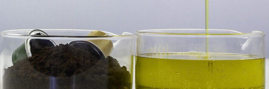 Nuevas cadenas de valor para el aprovechamiento de residuos orgánicos urbanos