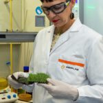 Nuevos procesos de reciclado de campos de césped artificial