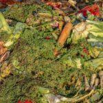 Sancionadas cuatro empresas en Cataluña por la gestión irregular de residuos orgánicos