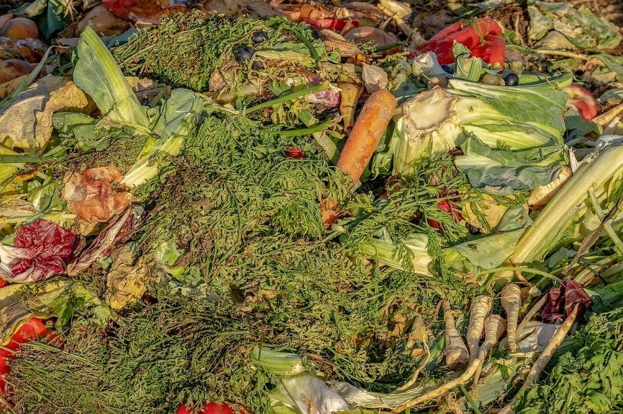 Imponen sanciones a cuatro empresas catalanas por gestión irregular de residuos orgánicos