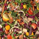 Nace la red Konposta Araba para mejorar la gestión de residuos orgánicos en Álava