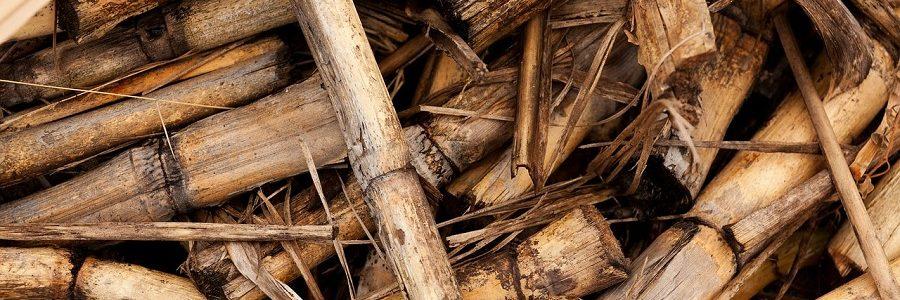 El ITE desarrolla un catalizador sostenible para la obtención de metano a partir de residuos agrícolas