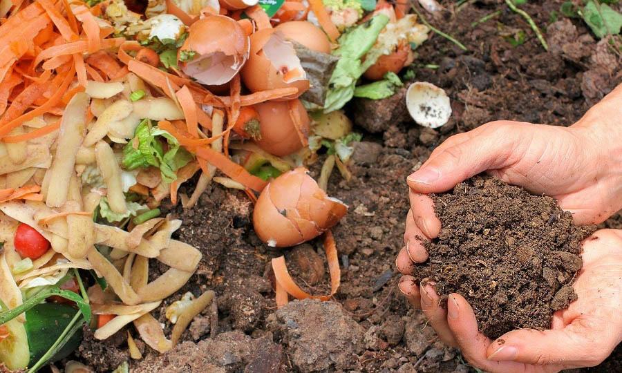 Proyecto SERCLA promueve la inserción laboral a través del compostaje