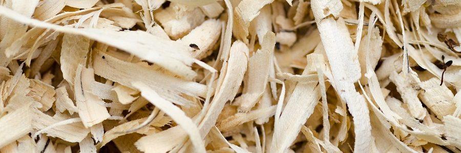 Científicos consiguen producir un bioplástico con residuos de madera