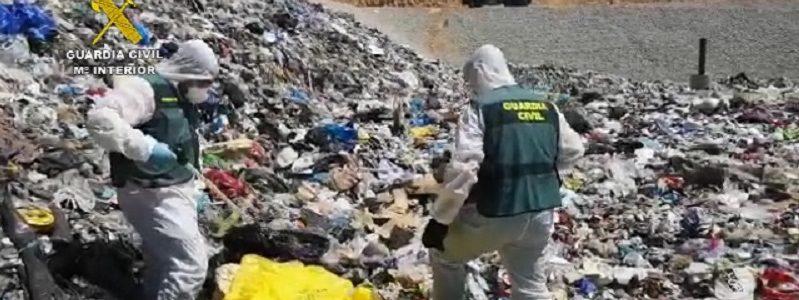 El SEPRONA investigó a más de 3.900 personas por delitos contra el medio ambiente en 2020