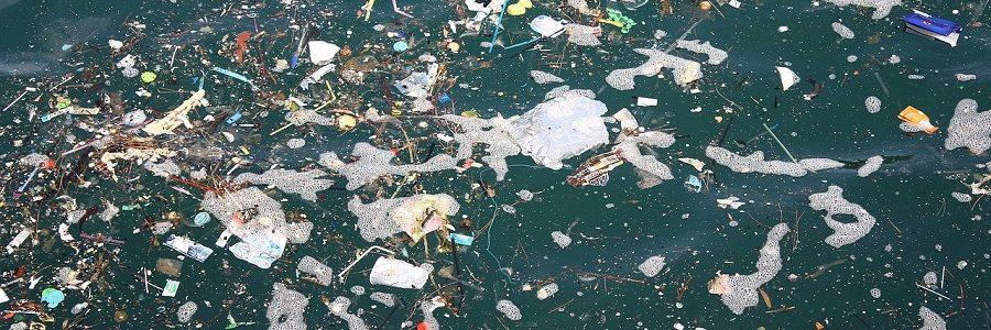 Tres cosas que (igual) no sabías sobre las basuras marinas