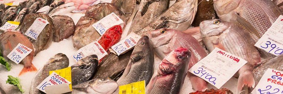 Bilbao recupera 350 toneladas de residuos de pescado con la recogida puerta a puerta en pescaderías