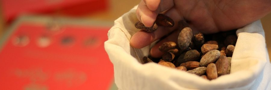 Nestlé utilizará residuos de la producción de cacao para generar energía