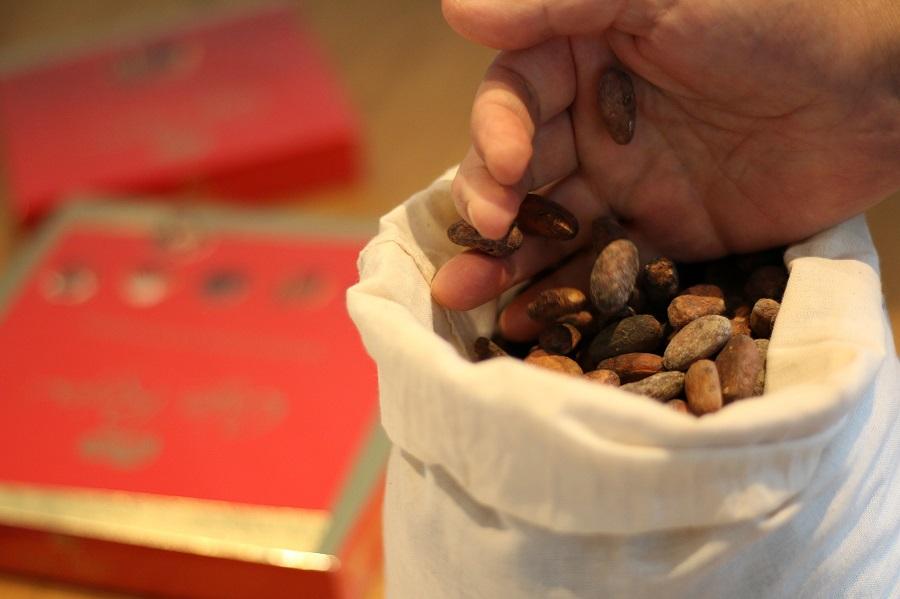 Valorización energética de residuos de producción de cacao