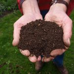 Lanzarote lanza un programa piloto de compostaje doméstico