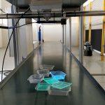 Itene organiza el I Encuentro sobre tecnologías de reciclado y valorización de envases