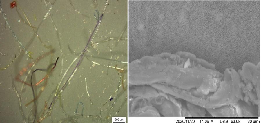 Nanoplásticos y contaminantes presentes en las mascarillas desechables