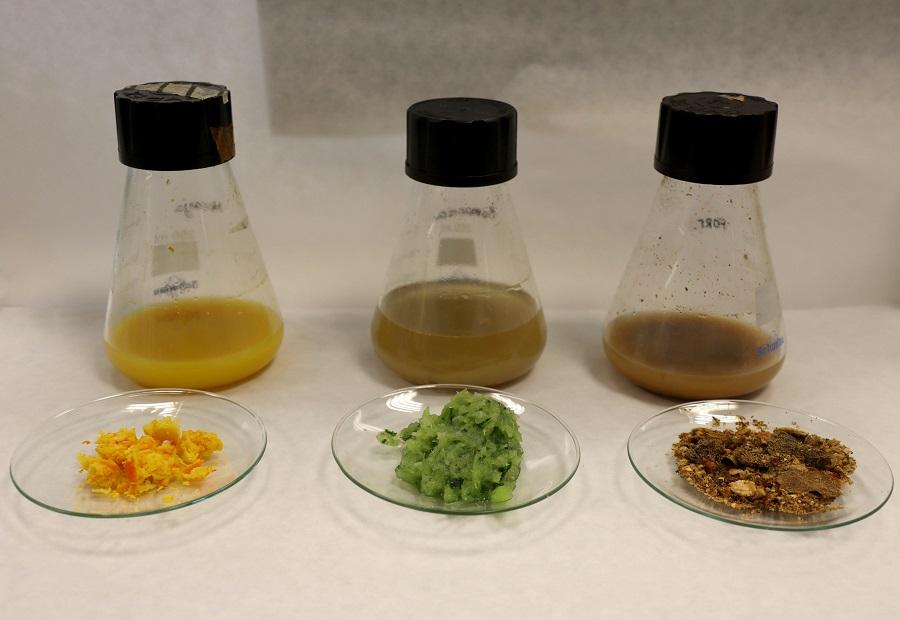 Nuevos biopolímeros a partir de residuos