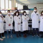 Medalla al Mérito Civil para los investigadores de Itainnova que desarrollaron un método para reciclar mascarillas FFP2
