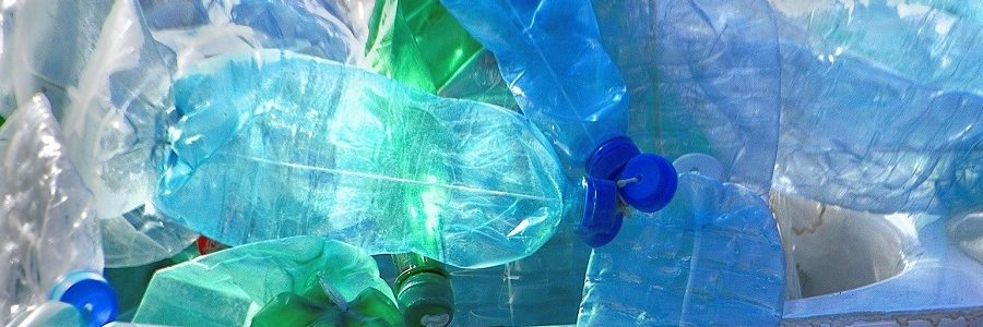 Bacterias para convertir residuos plásticos en aroma de vainilla