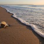 El impacto de los plásticos de un solo uso asociados a los viajes y el turismo