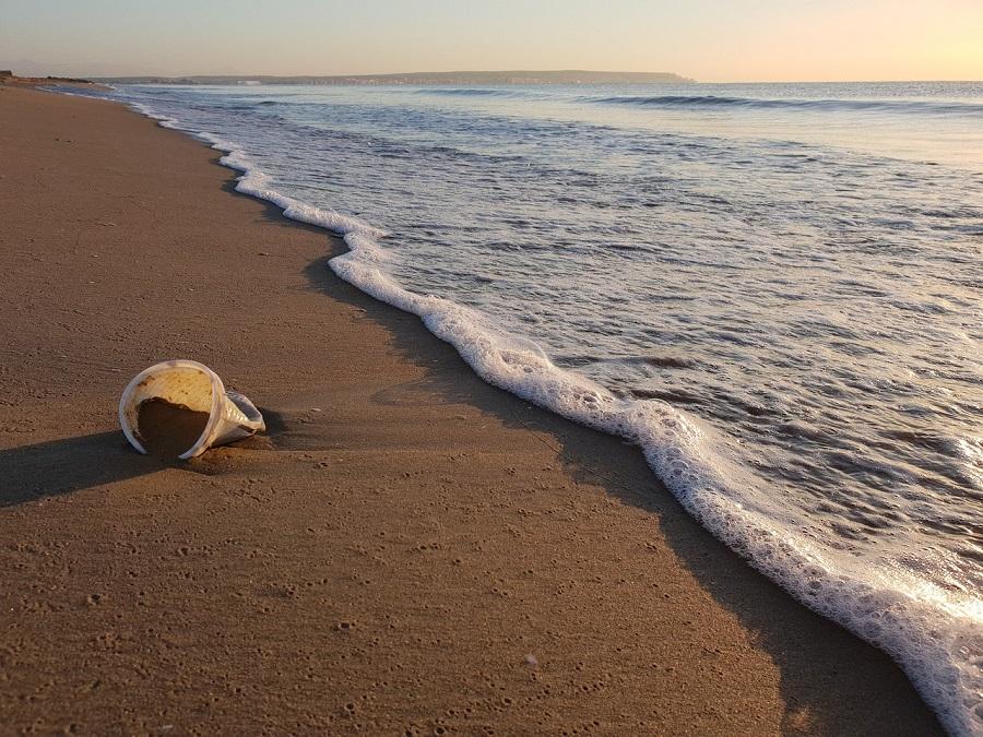 Informe sobre los plásticos de un solo uso asociados al turismo