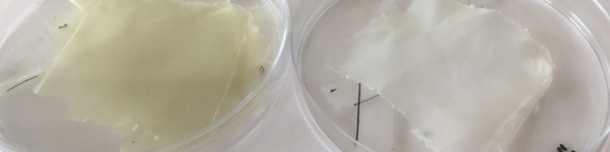 Crean un bioplástico a partir de residuos que mejora la conservación de los alimentos