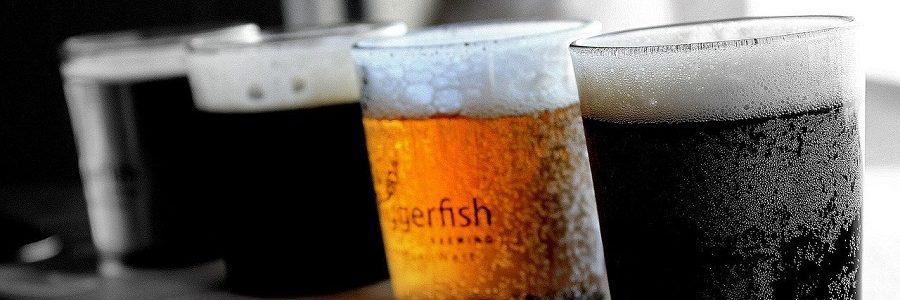 Reciclan residuos de la industria cervecera en nanofibras de celulosa