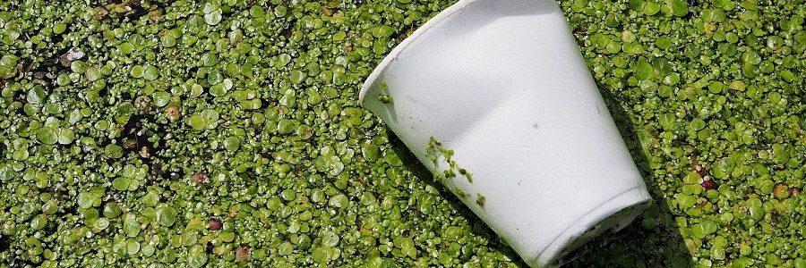 Biodegradable o no biodegradable, esa es la cuestión