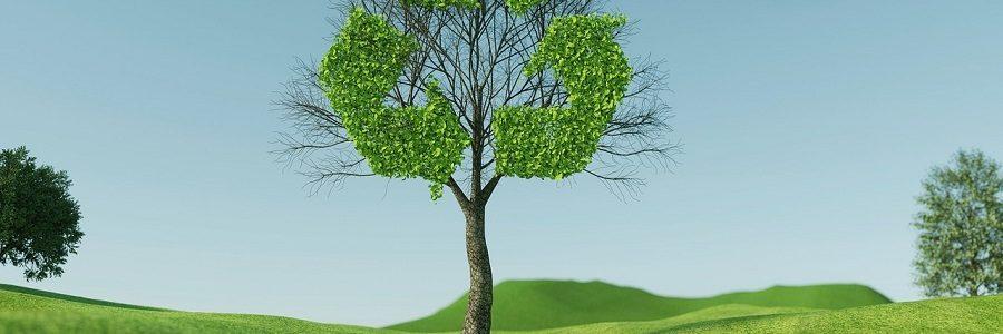 «La economía circular no es la panacea para todos los problemas ambientales»